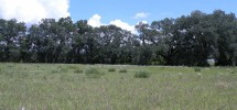 2.00 Acres for Sale